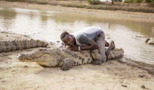 Des crocodiles domestiqués à Bazoulé au Burkina Faso, découvrez des images incroyables !