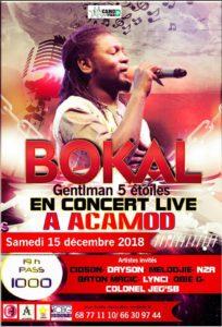Tchad : Le gentleman Bokal sur scène à ACAMOD