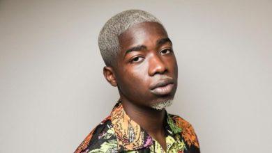 Photo of La diaspora Camerounaise s'insurge contre la libération du rappeur Français MHD !